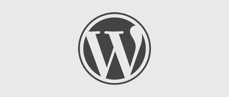 Wordpress web design in Spain